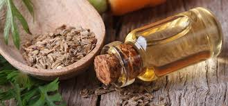 Cellery Seed Oil
