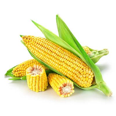 cornsilk