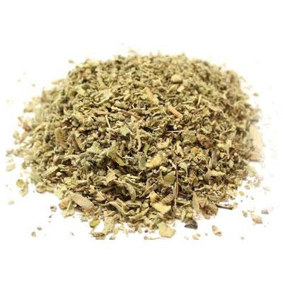 Mullein leaf 1
