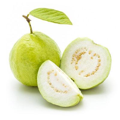 Guava 1