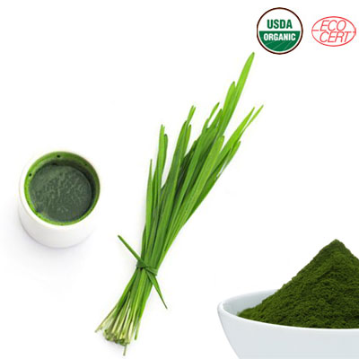 Wheat-Grass-Juice-Powder