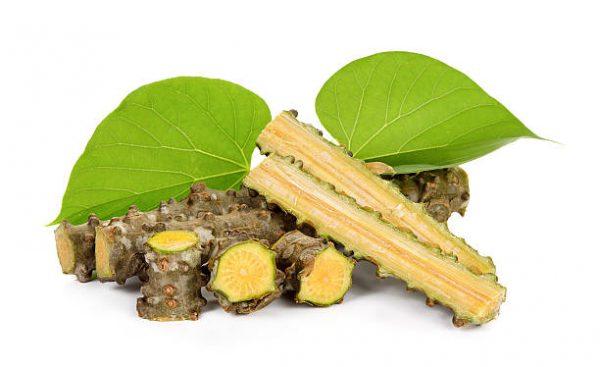 tinospora-cordifolia